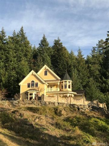 1656 Eagle Ridge Road, Orcas Island, WA 98245 (#1427116) :: Crutcher Dennis - My Puget Sound Homes