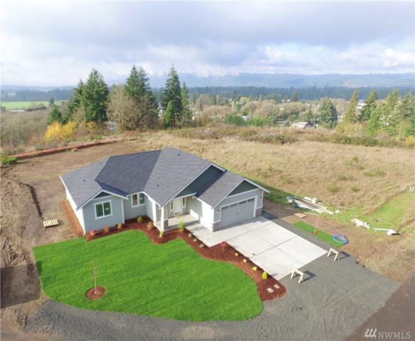 10135 Albany Park Lane SW, Rochester, WA 98579 (#1427177) :: Kimberly Gartland Group