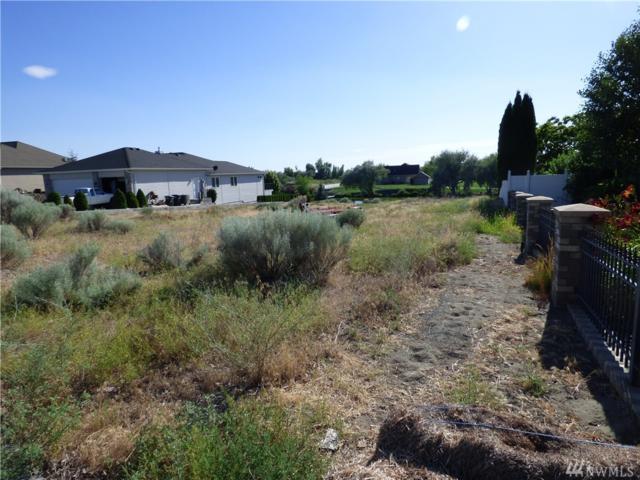 828 Camas Place, Moses Lake, WA 98837 (#1427179) :: McAuley Homes