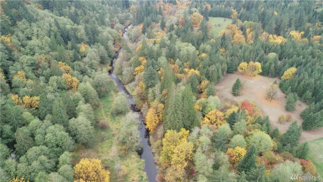 2 NE 185th Ave, Amboy, WA 98601 (#1427268) :: Real Estate Solutions Group