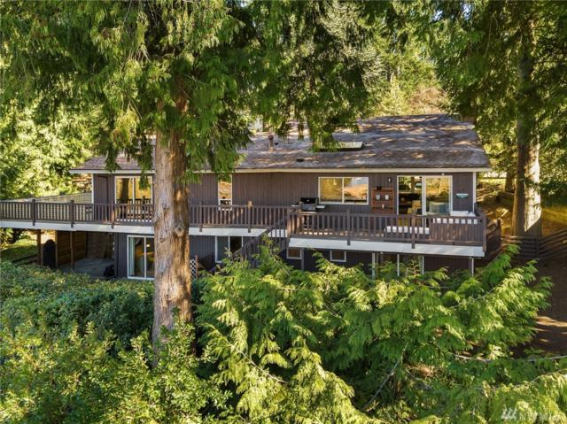1921 165th Place SE, Bellevue, WA 98008 (#1427569) :: Northern Key Team