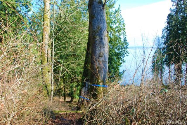 5558 Pine Sisken Rd, Blaine, WA 98230 (#1427574) :: Crutcher Dennis - My Puget Sound Homes