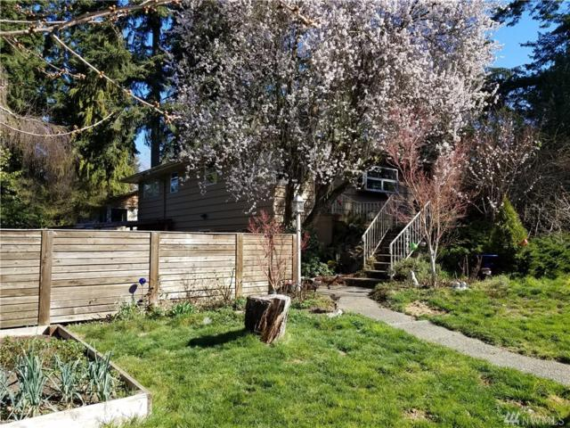 18403 Meridian Ave N, Shoreline, WA 98133 (#1427794) :: Canterwood Real Estate Team