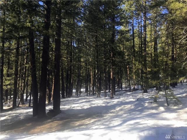 9 Mustard Mountain Rd, Winthrop, WA 98862 (#1427994) :: Hauer Home Team