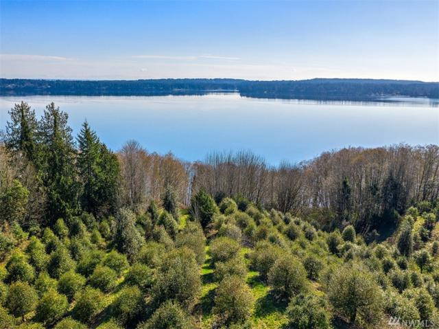 2156 NE Old Copper Beech Dr, Poulsbo, WA 98370 (#1428013) :: Better Homes and Gardens Real Estate McKenzie Group
