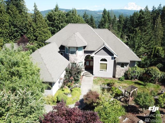 22803 162nd Ave E, Graham, WA 98338 (#1428246) :: Kimberly Gartland Group