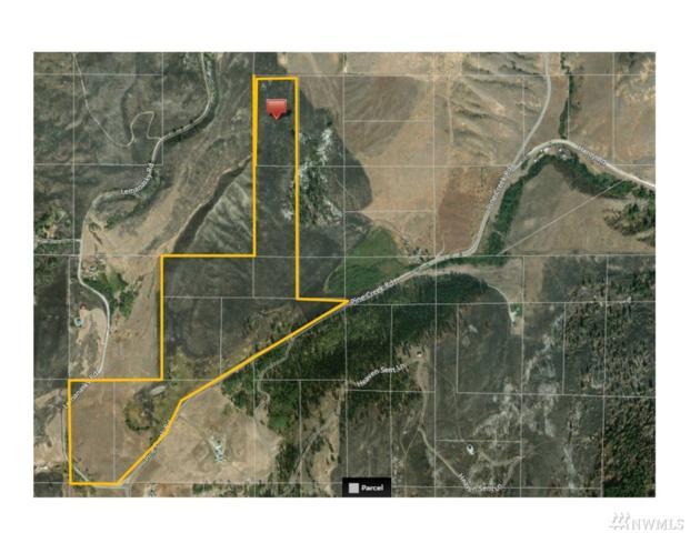 1-tbd N Pine Creek Rd, Tonasket, WA 98855 (#1428328) :: Keller Williams Western Realty