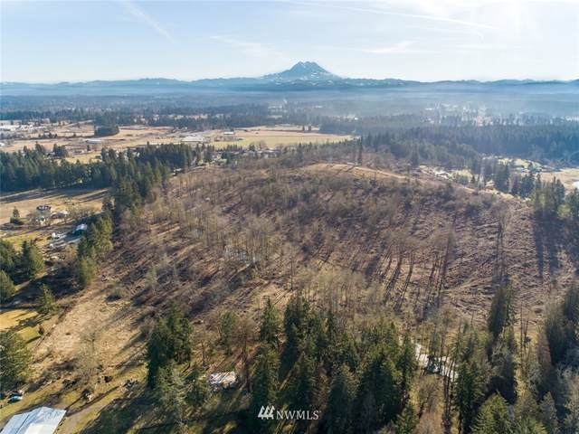 11247 Morris Road SE, Yelm, WA 98579 (#1428848) :: My Puget Sound Homes