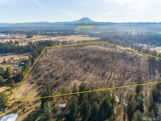 11247 Morris Rd SE, Yelm, WA 98579 (#1428848) :: NW Home Experts