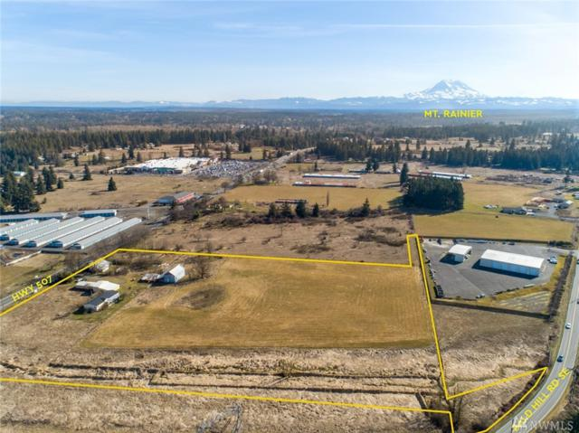 16731 State Route 507 SE, Yelm, WA 98597 (#1428849) :: NW Home Experts