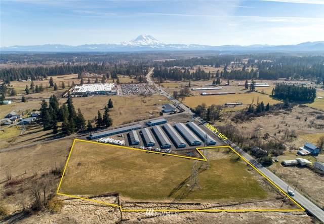 16700 State Route 507 SE, Yelm, WA 98597 (#1428850) :: Northwest Home Team Realty, LLC
