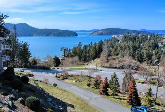 4301 Marine Crest Place, Anacortes, WA 98221 (#1428882) :: TRI STAR Team | RE/MAX NW