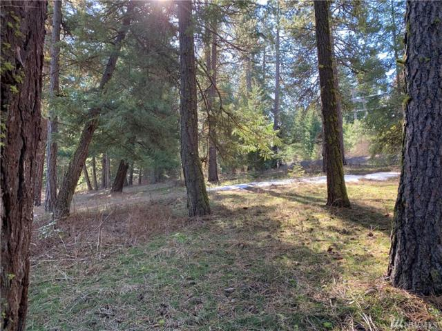 0-Lot 4 Lower Peoh Point Rd, Cle Elum, WA 98922 (#1428924) :: Sarah Robbins and Associates