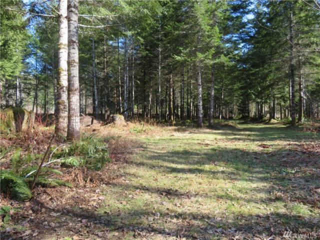 873 Boundary Rd, Elma, WA 98541 (#1428983) :: Canterwood Real Estate Team