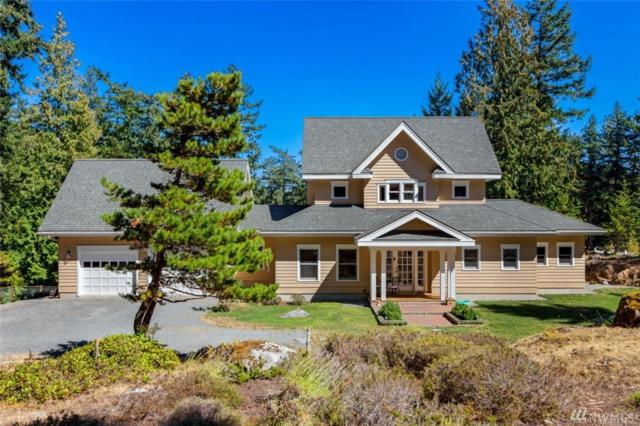 158 Gull Cove Lane, San Juan Island, WA 98250 (#1428990) :: Real Estate Solutions Group