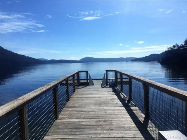 72 Snipes Landing Dr, Orcas Island, WA 98245 (#1429073) :: Homes on the Sound