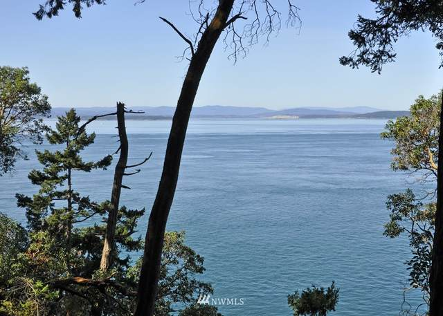 0 Fern Pl - Lot 13, San Juan Island, WA 98250 (MLS #1429181) :: Community Real Estate Group