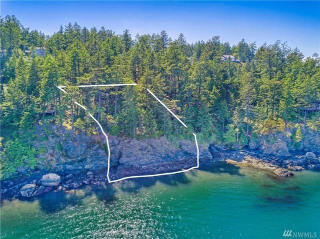 0-xxx Willows Lane, San Juan Island, WA 98250 (#1429202) :: Real Estate Solutions Group
