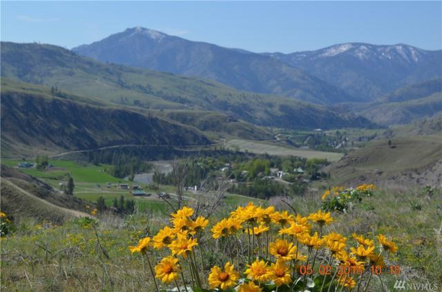 1 & 2 Methow Plateau, Pateros, WA 98846 (#1429631) :: Ben Kinney Real Estate Team