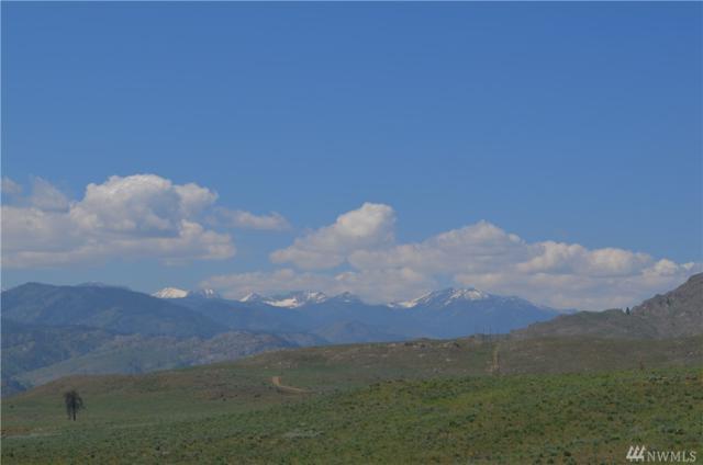 2 Vista Bend, Pateros, WA 98834 (#1429638) :: Ben Kinney Real Estate Team