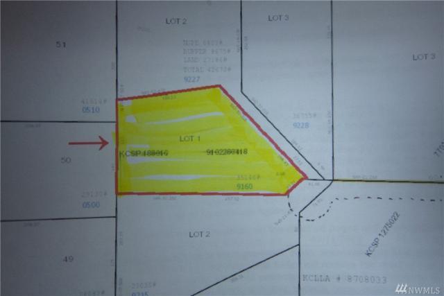 16114 NE 179th St, Woodinville, WA 98072 (#1429674) :: Better Properties Lacey