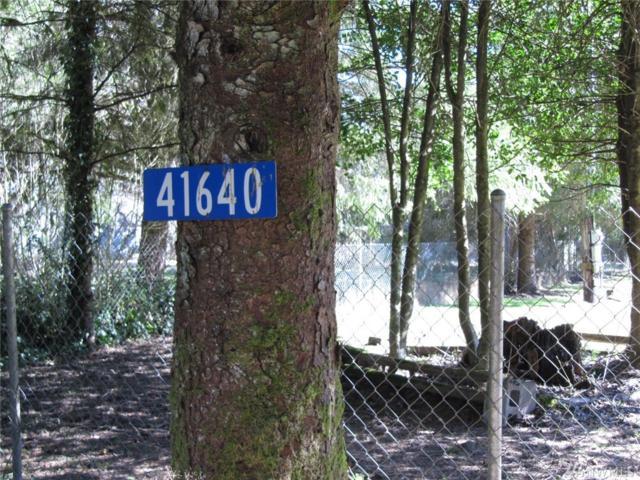 41640 North Shore Lane, Concrete, WA 98237 (#1429756) :: Kimberly Gartland Group