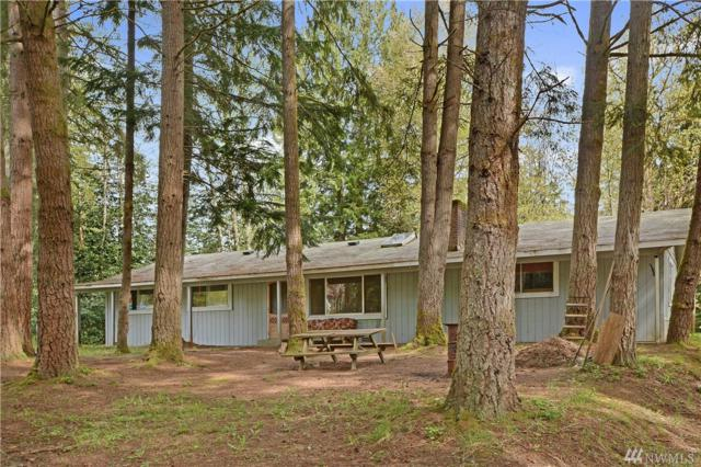 23856 SE 162nd St, Issaquah, WA 98027 (#1429891) :: Ben Kinney Real Estate Team