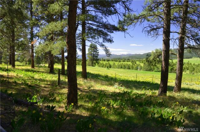 0-Lot 4A Hidden Valley Rd, Cle Elum, WA 98922 (#1430132) :: Real Estate Solutions Group