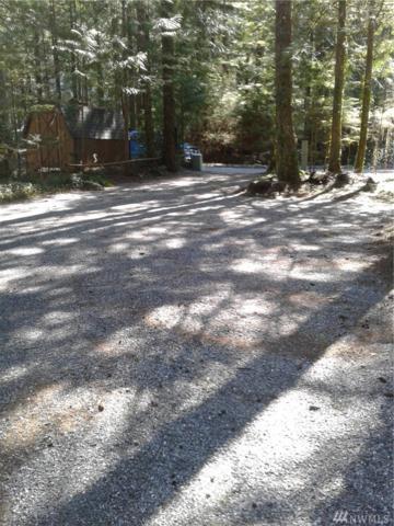 6-3 Schinn Canyon Cir, Deming, WA 98244 (#1430419) :: Keller Williams Everett