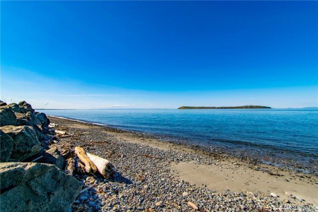 131 Beach Dr, Sequim, WA 98382 (#1430608) :: Center Point Realty LLC