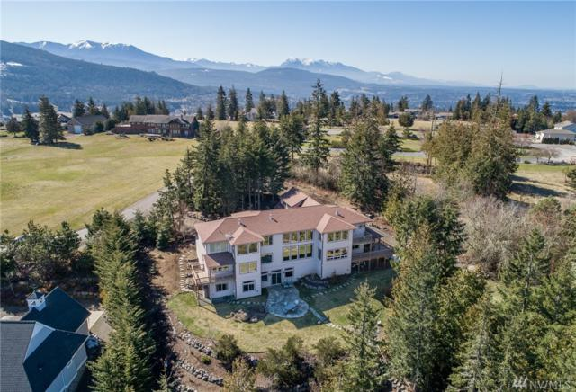 461 Carriage Dr, Sequim, WA 98382 (#1430913) :: Alchemy Real Estate