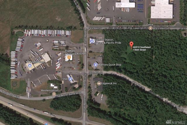 46910 Se 146th St, North Bend, WA 98045 (#1431208) :: Chris Cross Real Estate Group