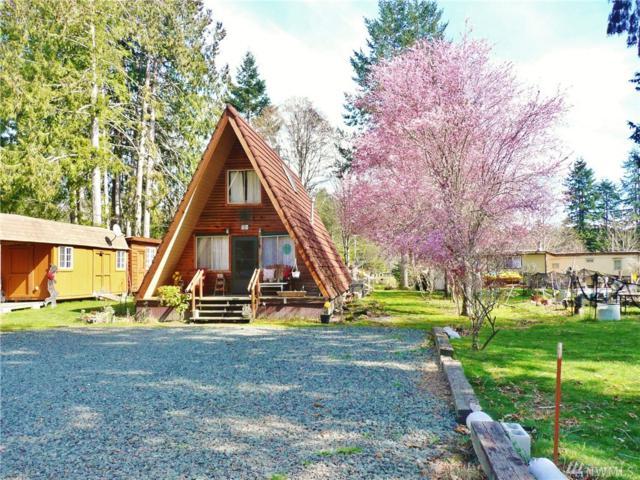 490 Mountain Trail Rd, Brinnon, WA 98320 (#1431281) :: Alchemy Real Estate