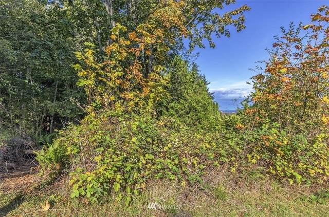 Port Ludlow, WA 98365 :: Pickett Street Properties