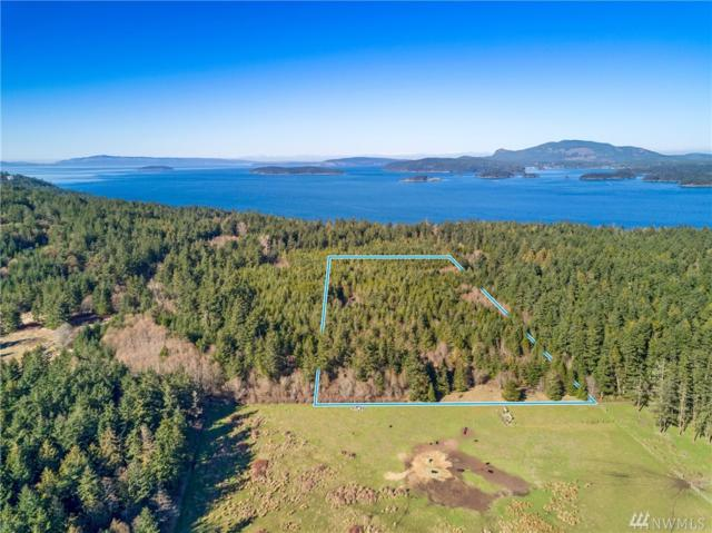 0-A Ridgedale Rd, San Juan Island, WA 98250 (#1431567) :: Liv Real Estate Group