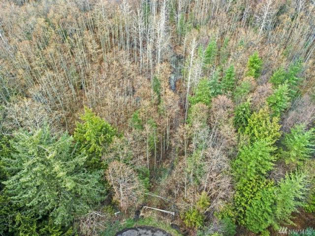 160-XX 30th Ave NW, Stanwood, WA 98292 (#1431782) :: Better Properties Lacey