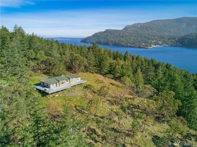 599 Lois Lane, Orcas Island, WA 98245 (#1432284) :: Ben Kinney Real Estate Team