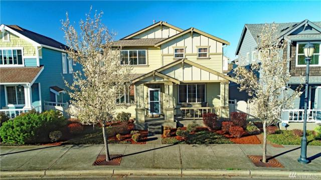5904 66th Ave SE, Lacey, WA 98513 (#1433136) :: Chris Cross Real Estate Group