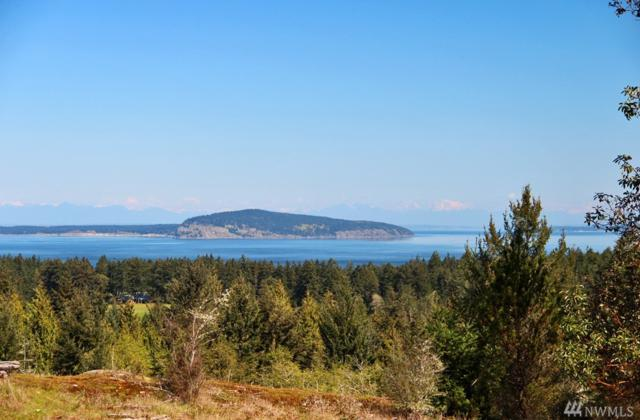 0 Northern Sky Rd, San Juan Island, WA 98250 (#1433190) :: The Kendra Todd Group at Keller Williams