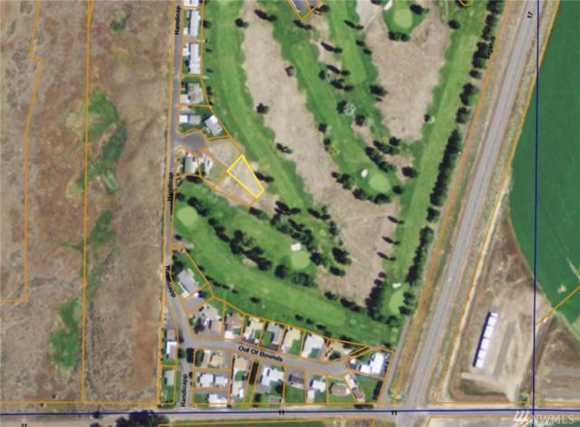 16735 Handicap Lane, Warden, WA 98857 (#1433192) :: Better Properties Lacey