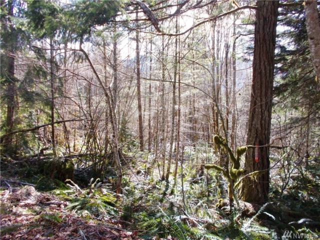 0-Lot 3 Davis Creek Rd, Randle, WA 98377 (#1433298) :: Northern Key Team