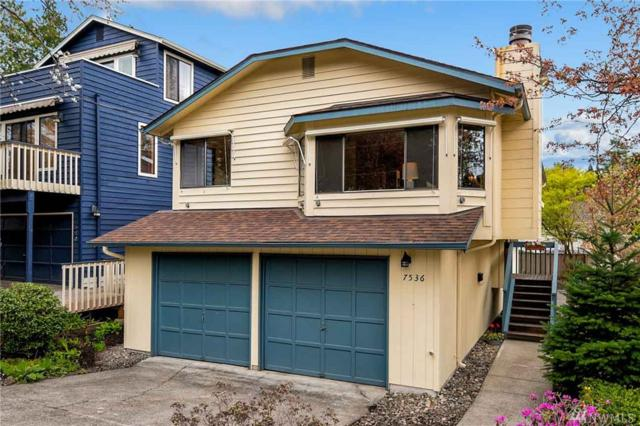 7536 24th Ave NE, Seattle, WA 98115 (#1433743) :: Commencement Bay Brokers