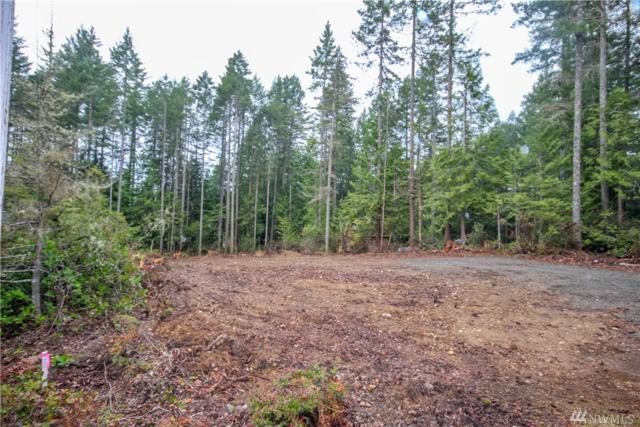 321 E Aycliffe Dr, Shelton, WA 98584 (#1433877) :: NW Home Experts