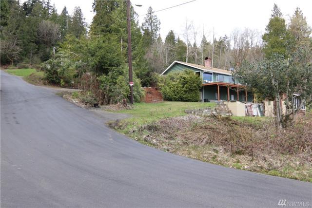 60 N Hamma Ridge Dr, Lilliwaup, WA 98555 (#1434031) :: Ben Kinney Real Estate Team