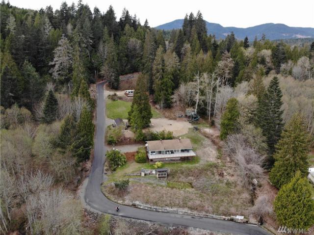 100 N Hamma Ridge Dr, Lilliwaup, WA 98555 (#1434034) :: Ben Kinney Real Estate Team