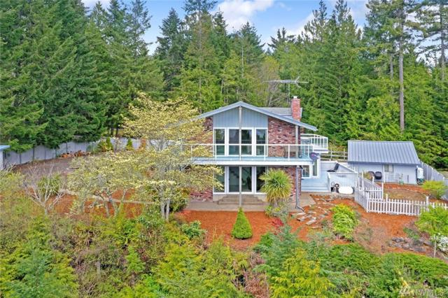 350 Seamount Dr, Brinnon, WA 98320 (#1434059) :: Real Estate Solutions Group