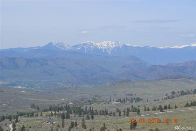 222 Alpine Canyon Dr, Oroville, WA 98844 (#1434351) :: Northern Key Team