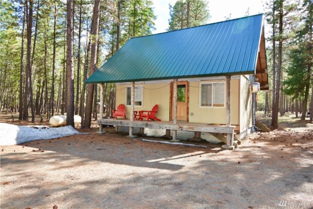 113 Lost River Rd, Mazama, WA 98833 (#1434445) :: TRI STAR Team | RE/MAX NW