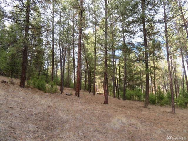 0-Lot 1D Evergreen Dr, Curlew, WA 99118 (MLS #1434755) :: Nick McLean Real Estate Group