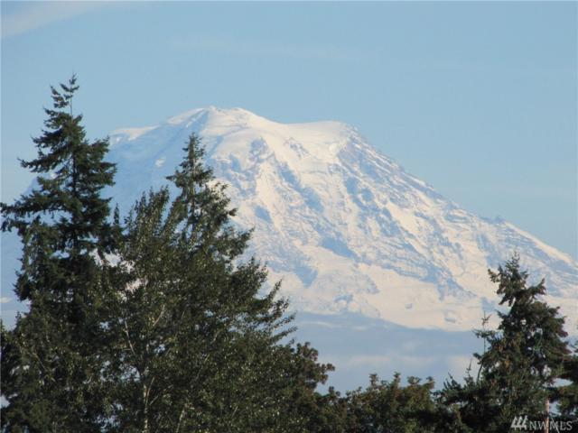 3310 58th Ave NE, Tacoma, WA 98422 (#1435341) :: Ben Kinney Real Estate Team